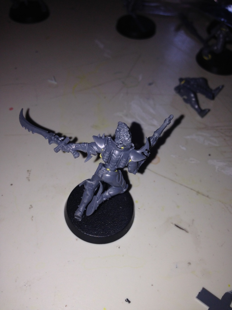 Dark Eldar Aspect Warriors Image610