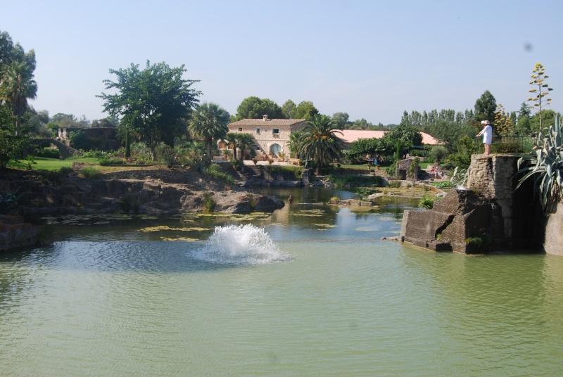 (34) Le jardin de Saint-Adrien - Servian Dsc_6816