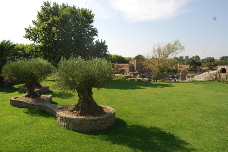 (34) Le jardin de Saint-Adrien - Servian Dsc_6818