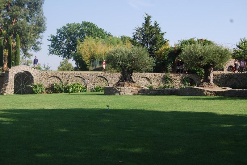 (34) Le jardin de Saint-Adrien - Servian Dsc_6820