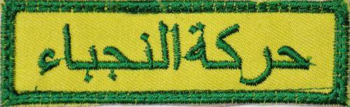 Peace Brigades and Brigades of the Popular Defense patches - Page 2 Al_nuj11