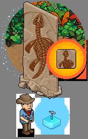 """[ALL] Offerta """"Affascinanti Fossili Rari"""" - Fossile Plesiosauro Cec86d10"""