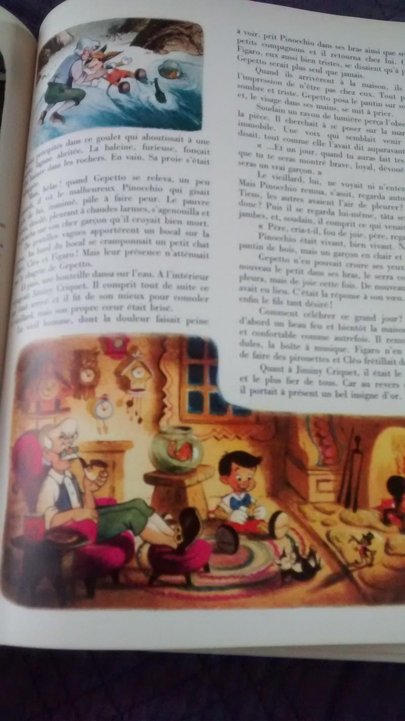 Nos trouvailles Disney dans les vide-greniers - Page 20 Img_2011