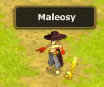 Candidature Maleosy / Sylfas Maleos10