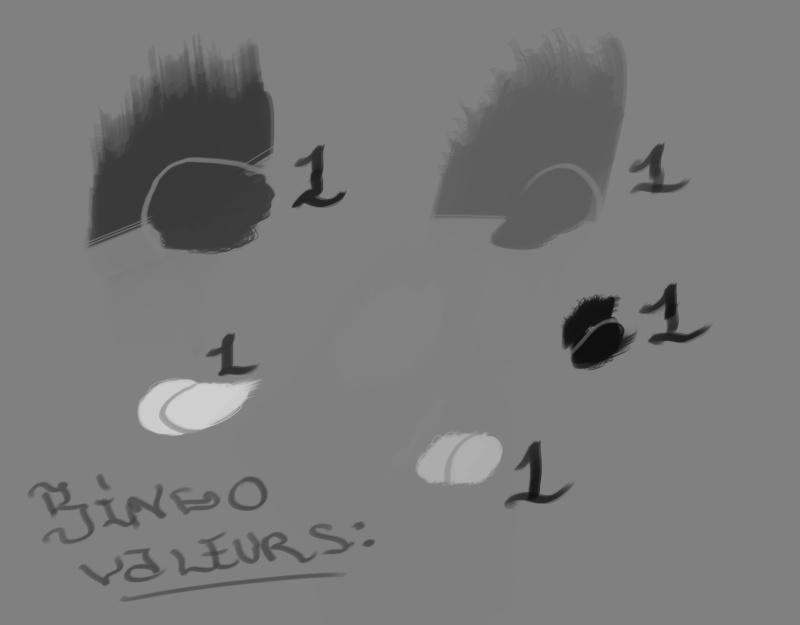 [defis] le Bingo valeurs Bingov10
