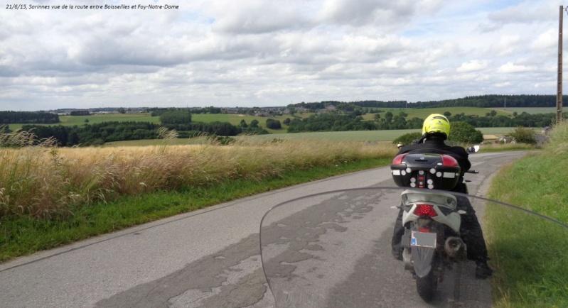 Encore un CR en retard, celui du 21/6/15, +/- 150 km dans le sud du Namurois 2610