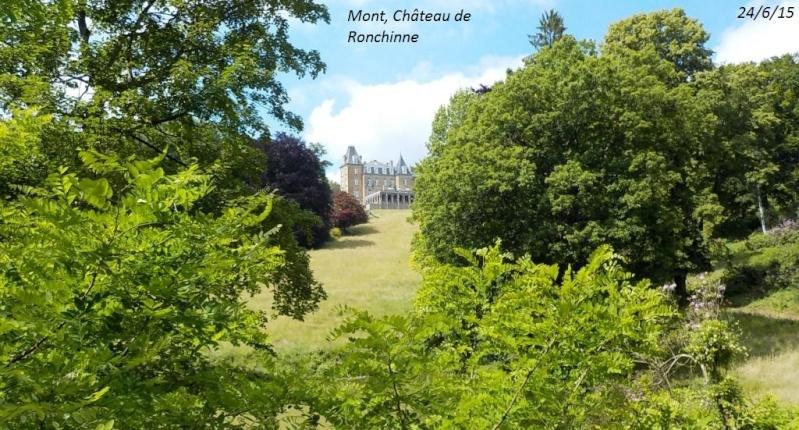 CR d'une balade belge, forcément, du 24/6/15 Dscn0938