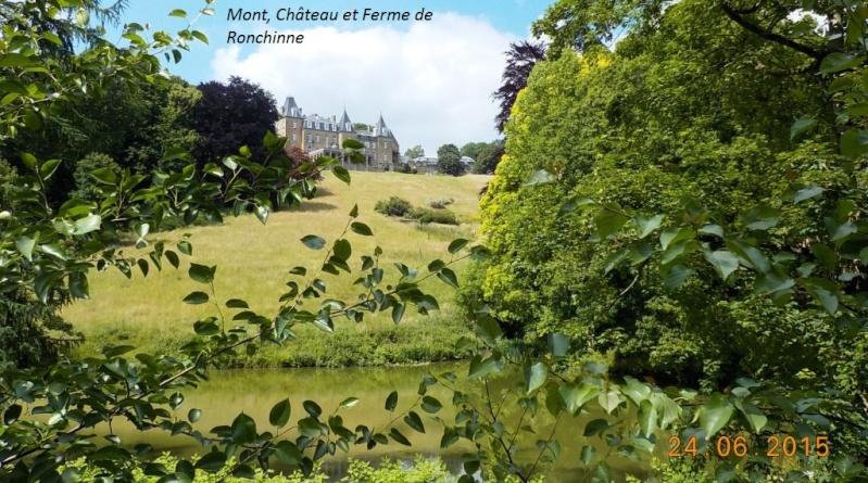 CR d'une balade belge, forcément, du 24/6/15 Dscn0939