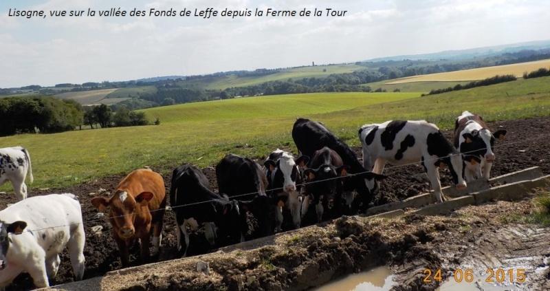 CR d'une balade belge, forcément, du 24/6/15 Dscn1033