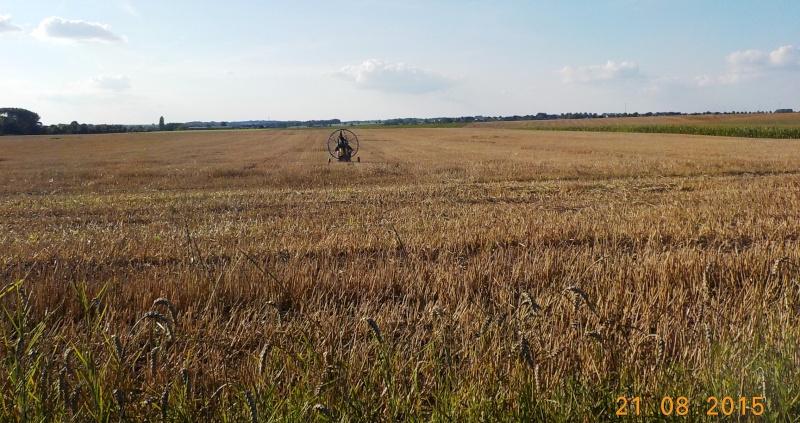 Encore une sortie rurale, le 21/8/15 Dscn1452