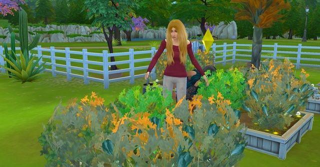 les Sims 20-07-10