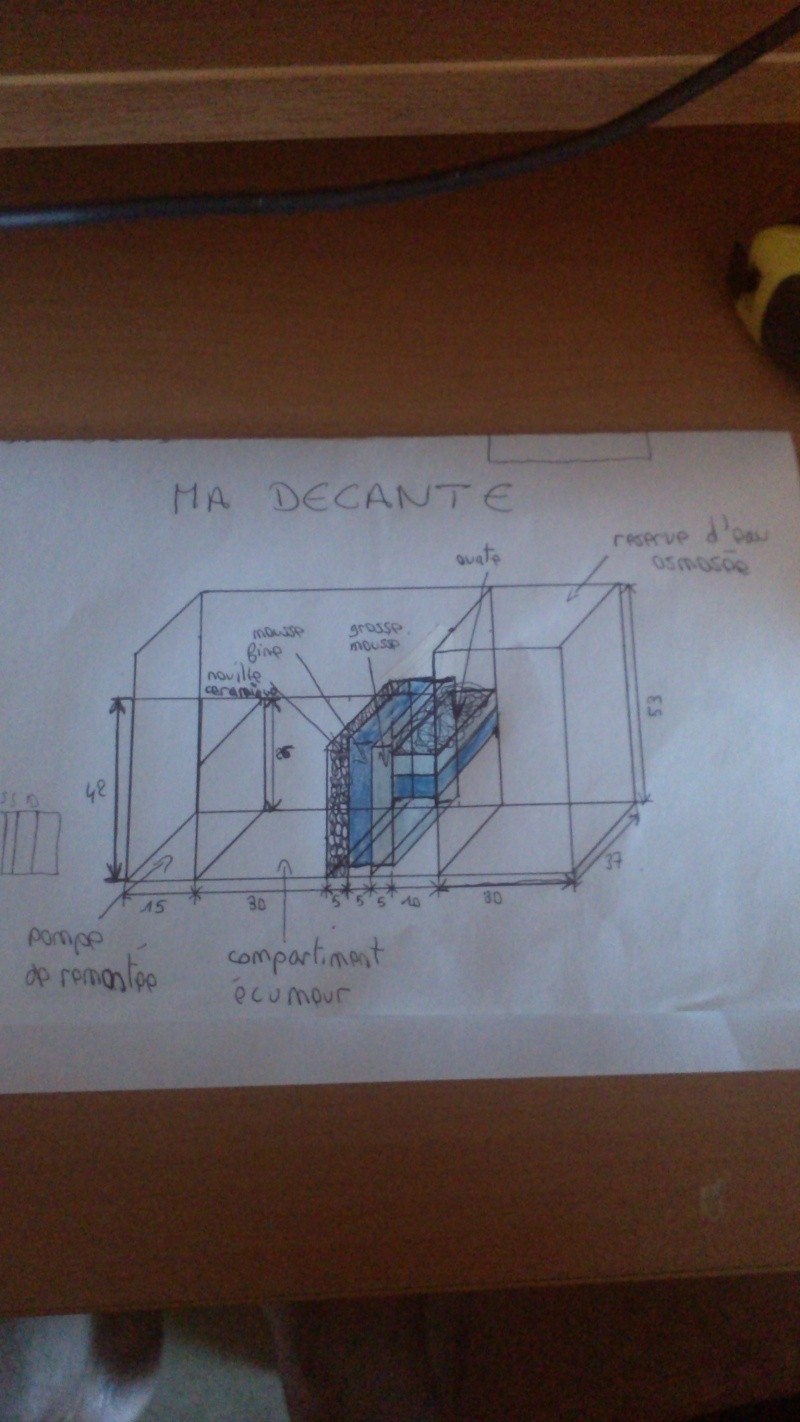decante Img_2022