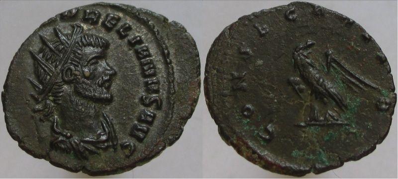 Deux hybrides d'Aurélien /revers CONSECRATIO Image-11
