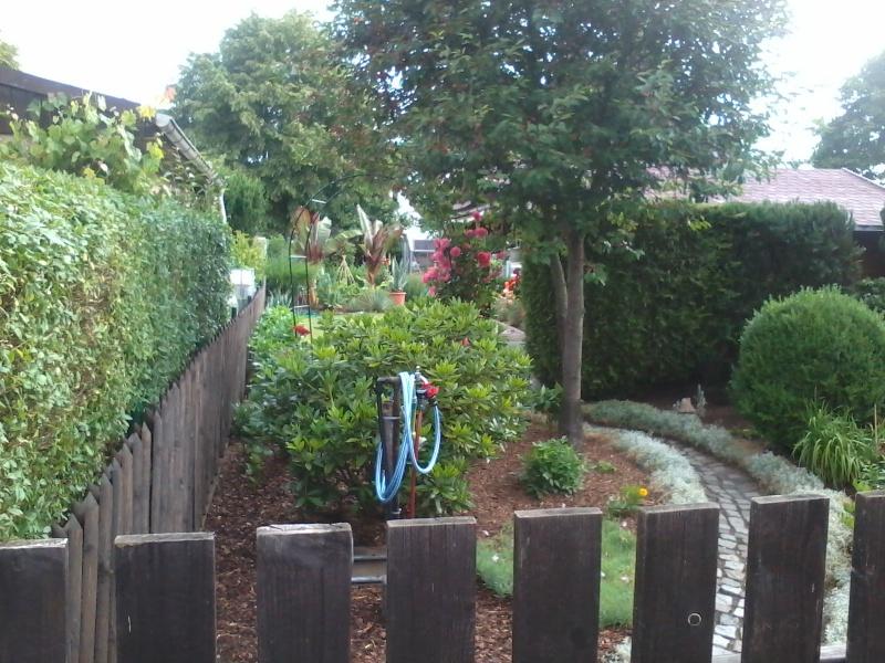 ein Blick in meinen Garten (agavenroland) Foto1322