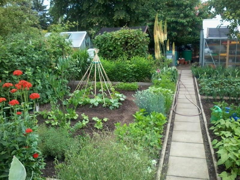 ein Blick in meinen Garten (agavenroland) Foto1335