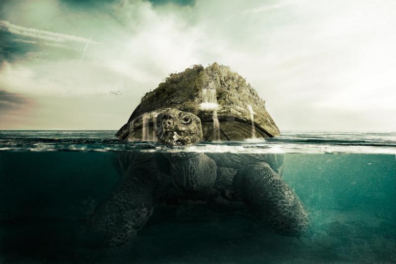 Description : Tortuga Giant_10