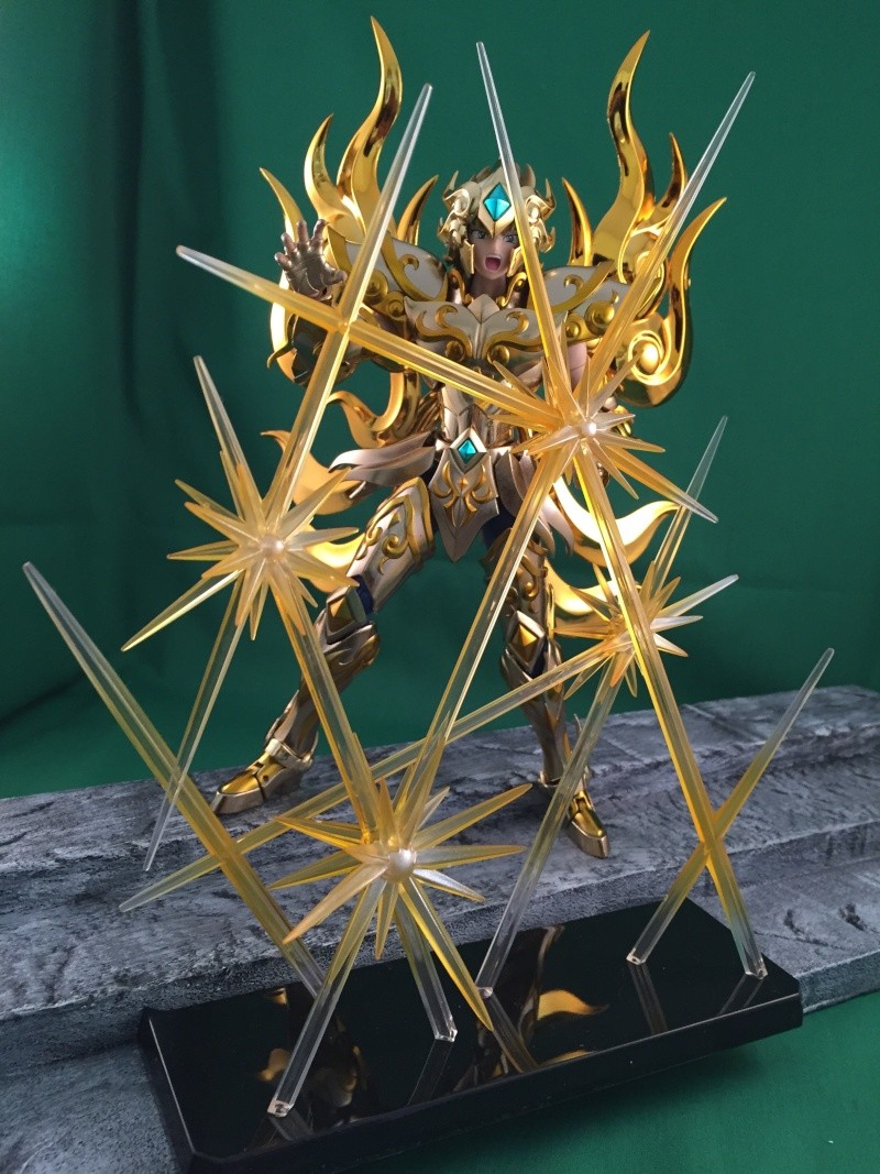 Les photos/montages de votre Myth Cloth EX du Lion Soul of Gold (God Cloth) Img_0118