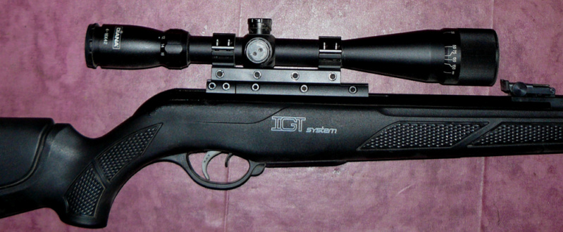 rail lunette et montage GAMO P1030810