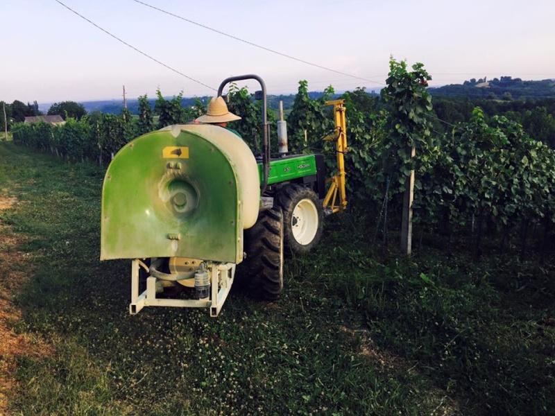 Radovi & poslovi u vinogradu - Page 5 11041210