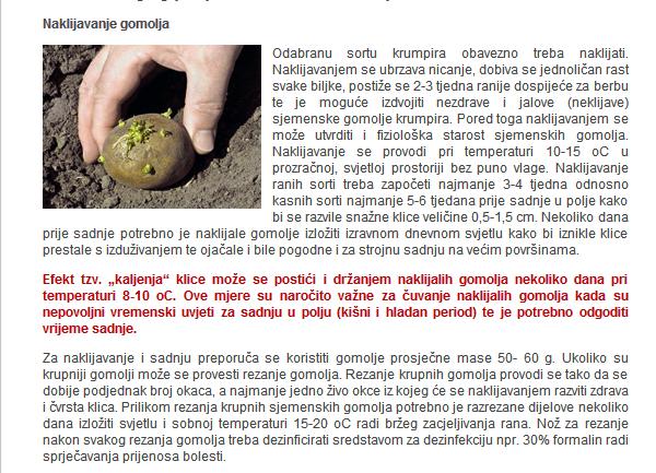 Krumpir       - Page 2 Gospod11
