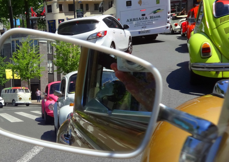 III Plaga Eskarabajos - 31 Mayo 2015 - FOTOS Dsc01515