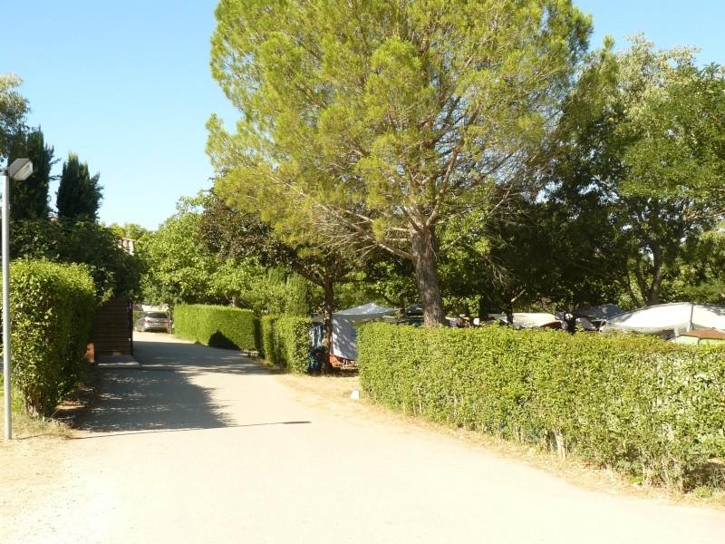 Camping les Pins, les Salles sur Verdon P1180912