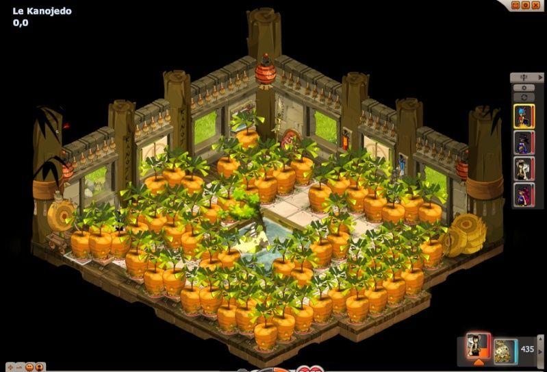 Après les labyrinthes de Maïs ...  Cawott10