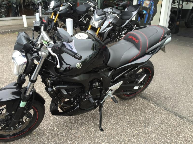Yamaha FZ6  Img_2212