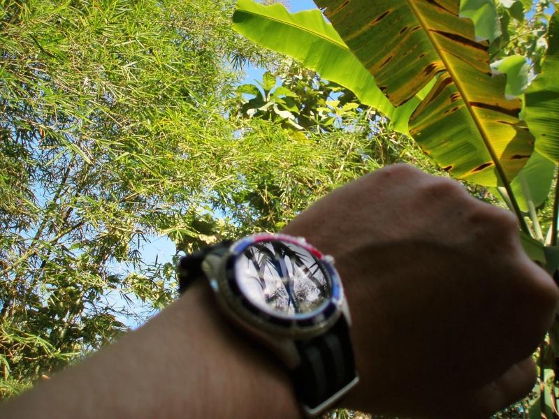 Votre montre du jour - Page 31 P6300010