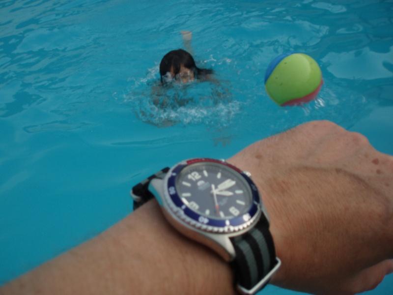 Votre montre du jour - Page 4 P7140013