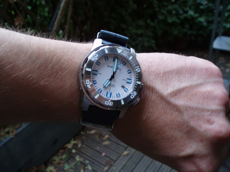 Votre montre du jour - Page 4 P8160311