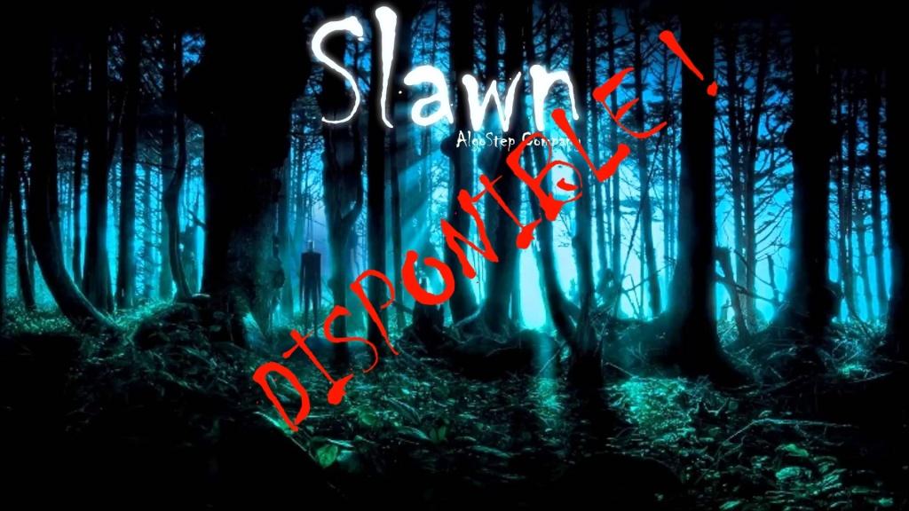 [JEU 3D] - Slawn Slawn_10