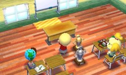 Preview: Animal Crossing: Happy Home Designer Medium14