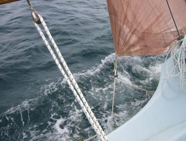 Entre Terre et Mer Gloup10