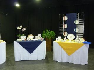 Expo à Saint Quay P1140215
