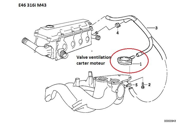 [ BMW E46 316i M43tu an 2000 ] Claquement admission gargouillis dans puit de jauge 11_m4311
