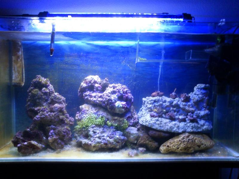 100L eau de mer Dsc_0811