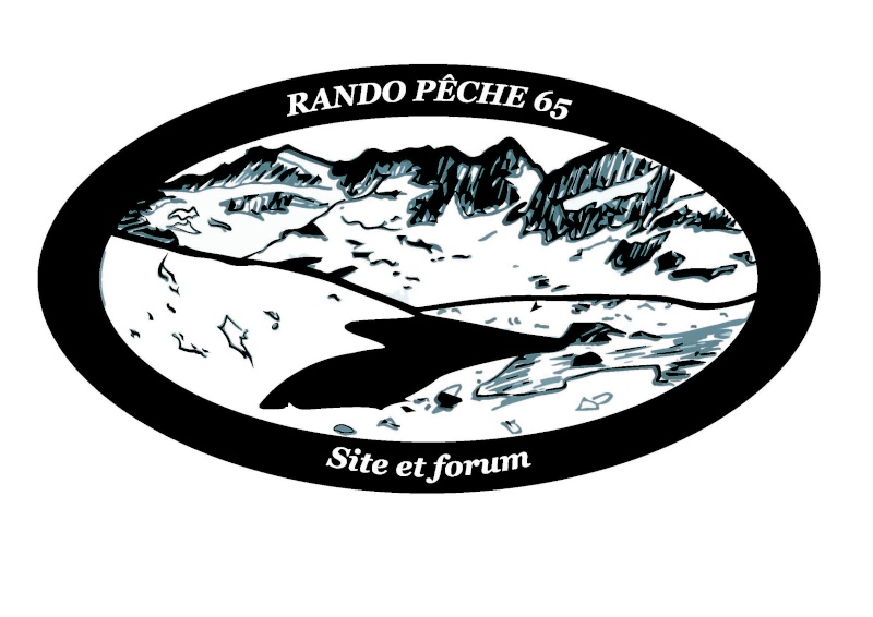 Tee shirt RP65 Logo1010