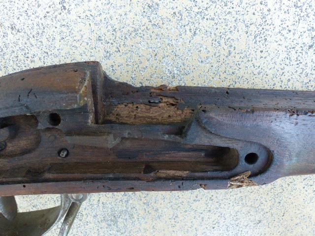 Après le bois attaqué par les vers, le bois ruiné par les vers! P1040910