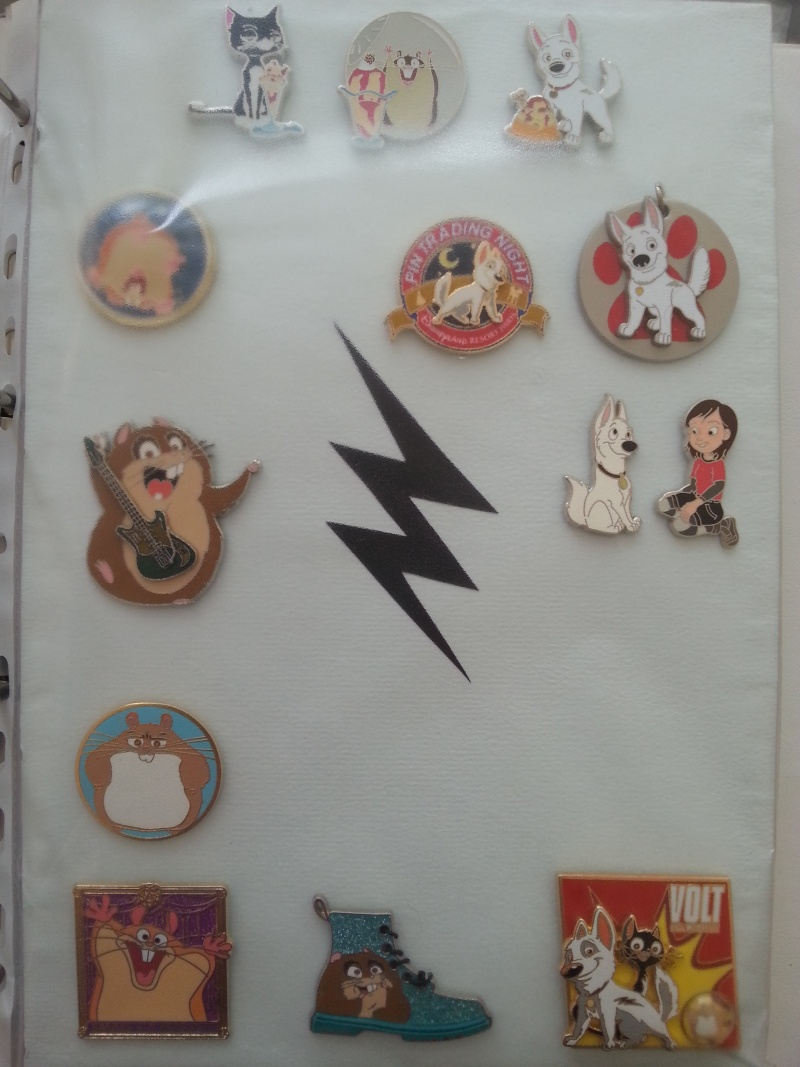 Le Pin Trading à Disneyland Paris 20150624