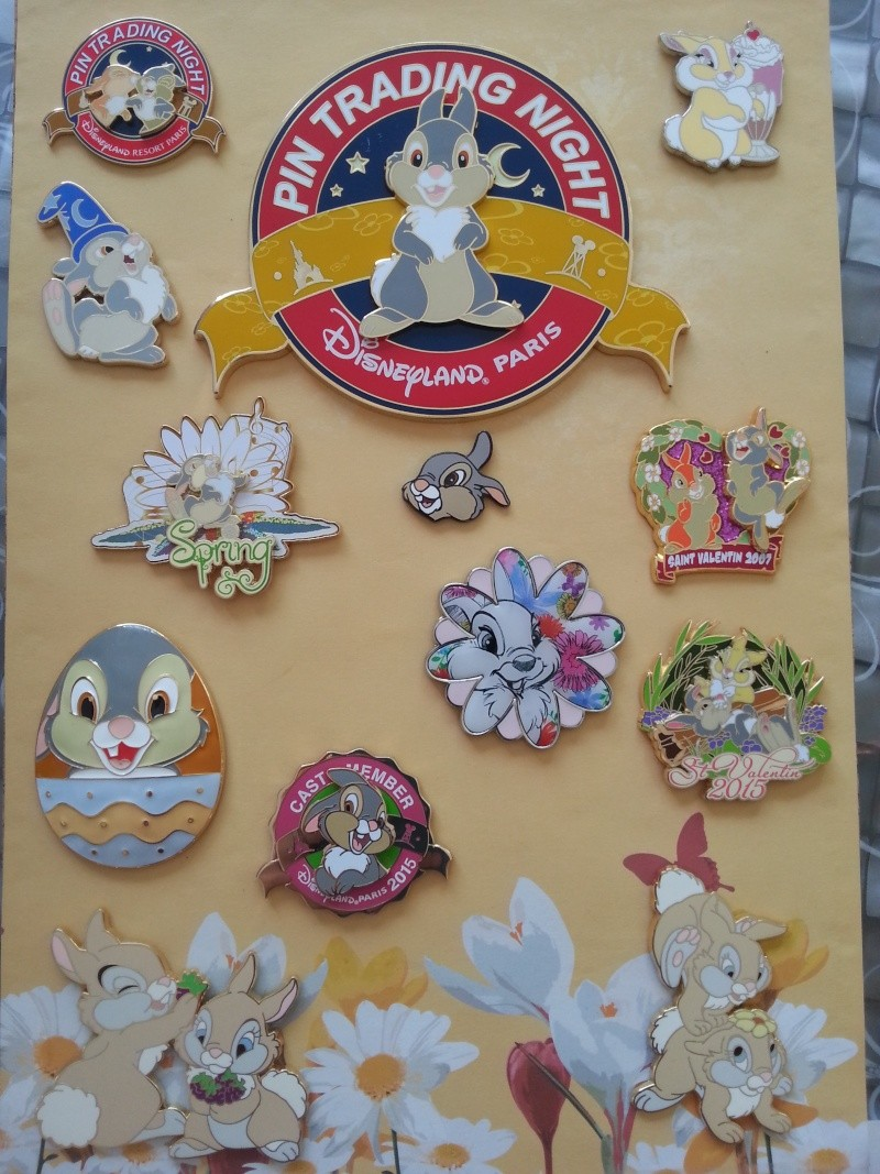 Le Pin Trading à Disneyland Paris 20150629