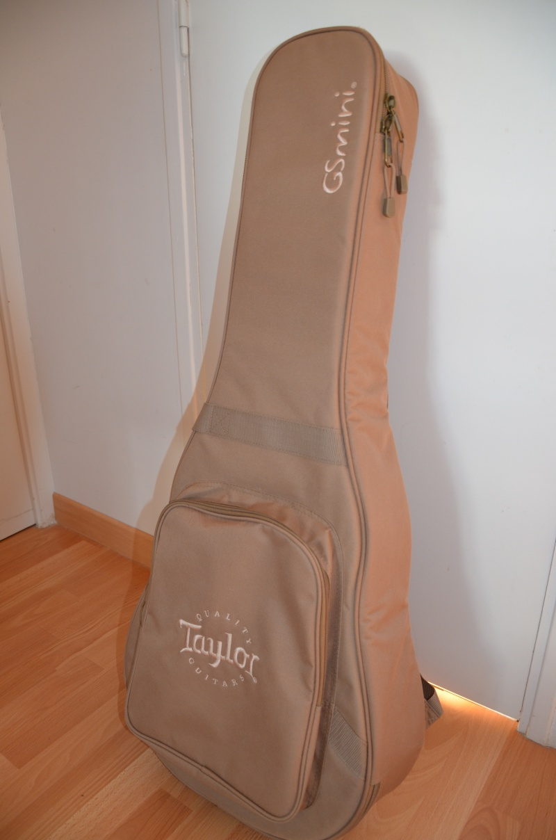 A vendre Taylor Mini GS VENDUE !!!  Dsc_0913
