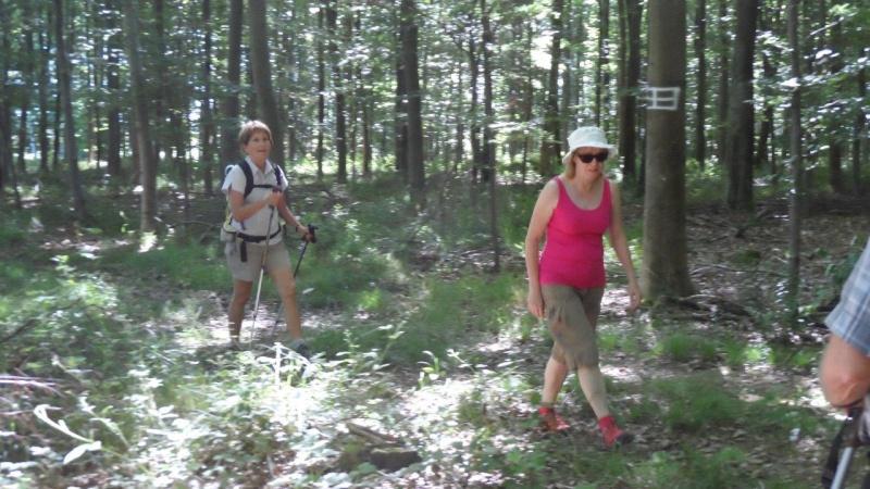 Dimanche 28 juin Lyons-La-Forêt Rando_13