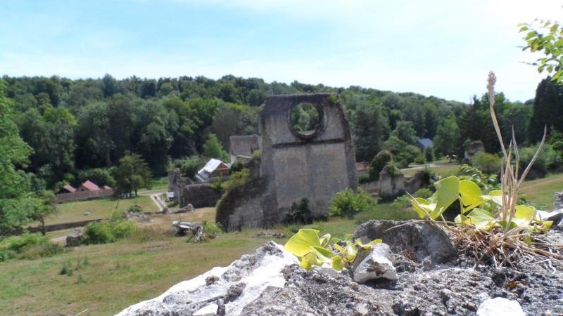 Dimanche 28 juin Lyons-La-Forêt Rando_22