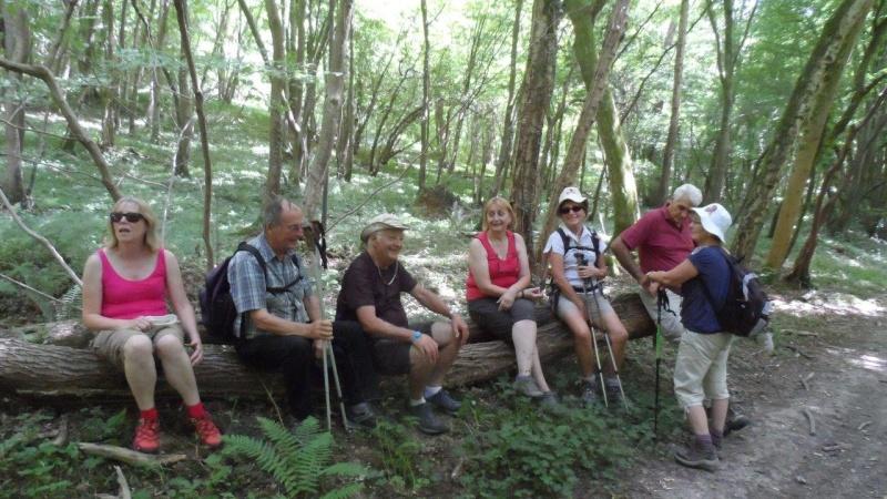 Dimanche 28 juin Lyons-La-Forêt Rando_23