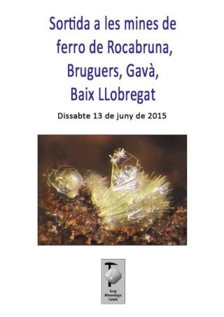 RESSENYA sortida dissabte 13-06-15 mines de ferro de Rocabruna, Bruguers (Gavà, Baix Llobregat). Sortid11