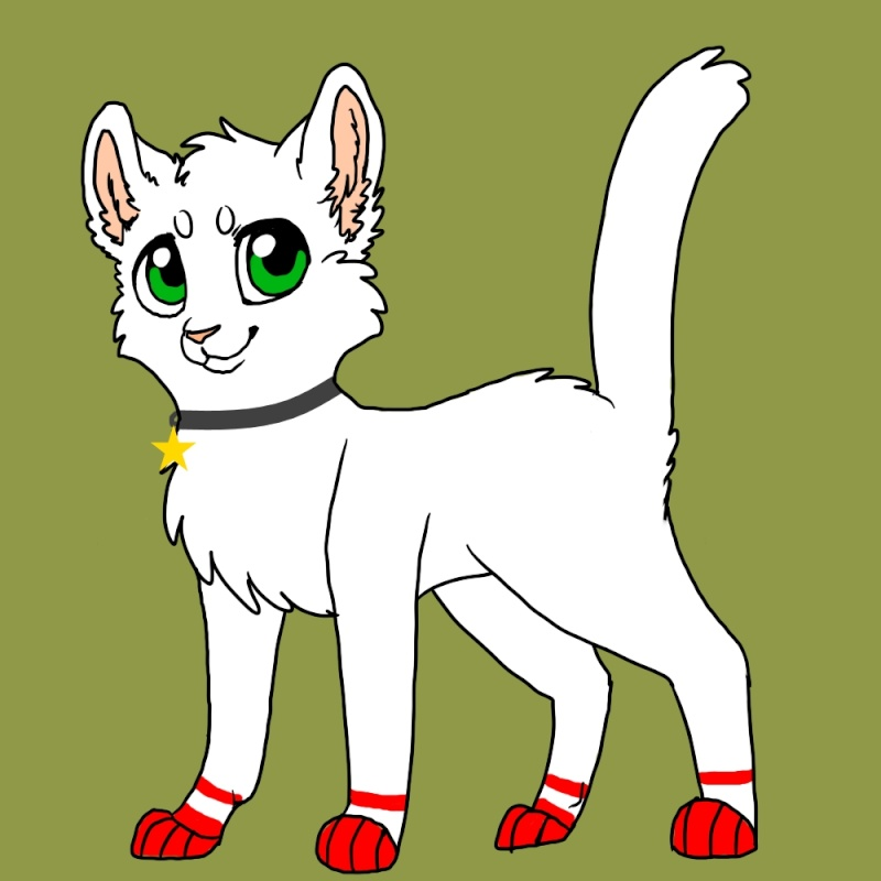 Dorfkatzen Sei eine Dorfkatze, Hauskatze oder ene Waldkatze. Nimm dein Leben in die Hand Stern110