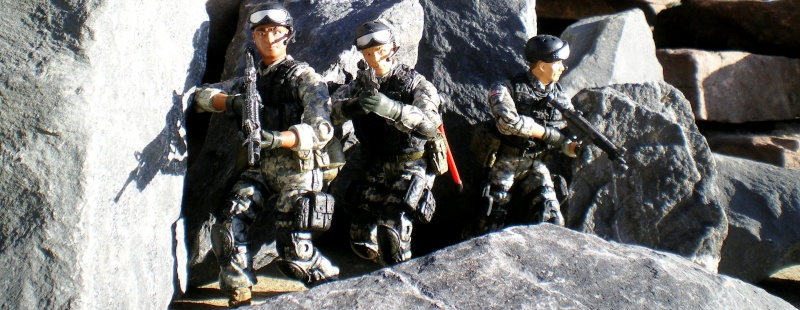 Selvaland, mes soldats en action - Page 11 Imgp2311