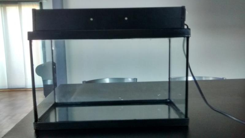 Projet aquascaping 20L Img_2025