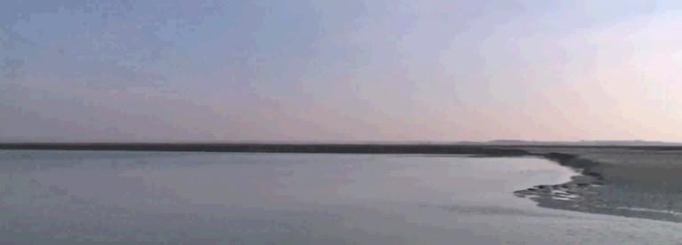 Le Mur - Neptune
